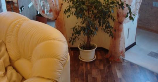 Трехкомнатная квартира на Веденеева